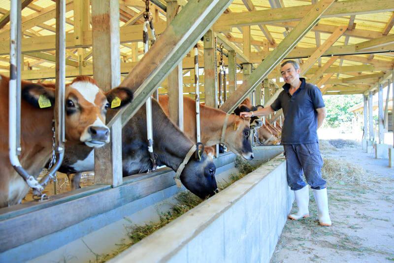 酪農への想い